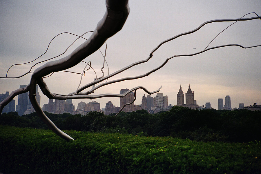 Roxy Paine on the Roof of the Metropolitan Museum