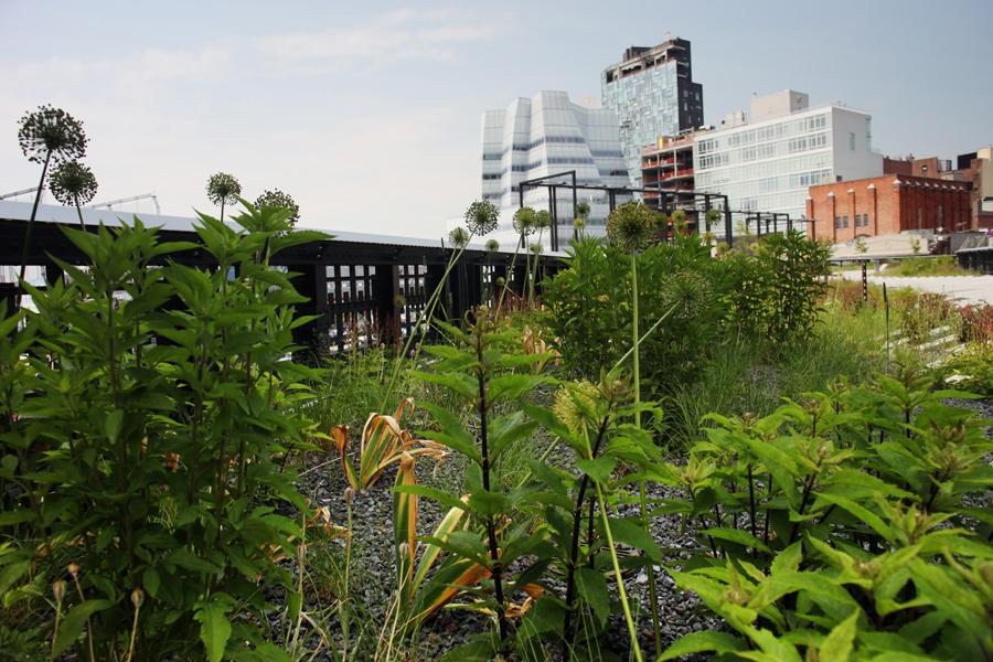 High Line Phase 1