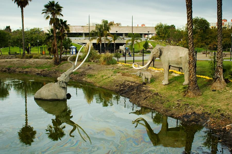 The Drowning Mammoth at the La Brea Tarpits